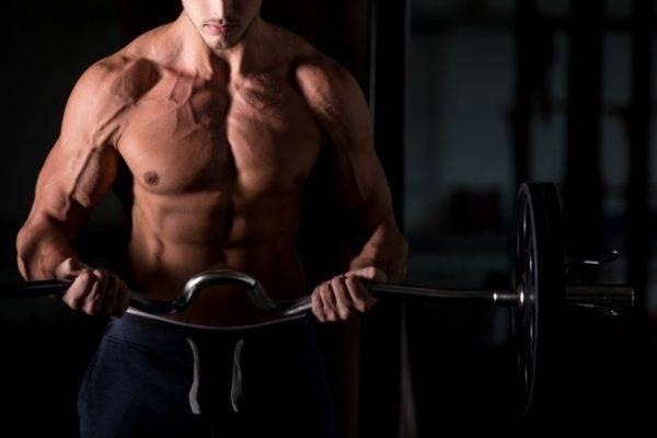 Program pentru sala de sport: antrenamentul care dă rezultate