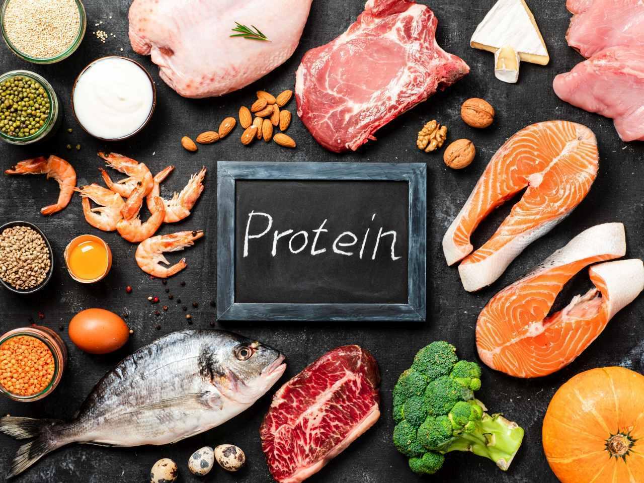 Proteinele in alimentatie sala alimentatie antrenament